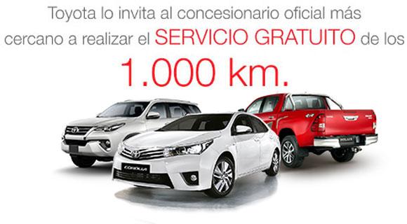 Servicio gratuito 1000km.